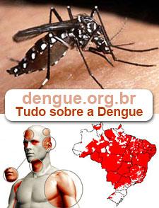 dengue.org