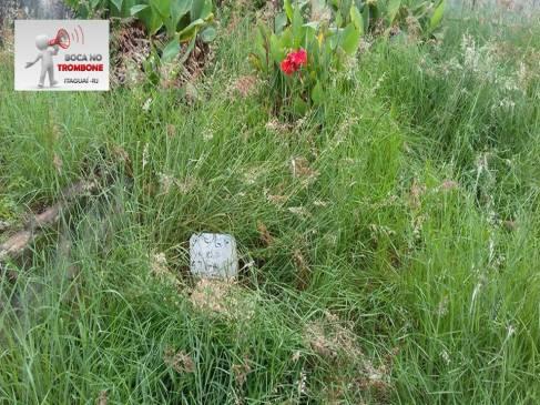 O cemitério nessa parte parece um terreno baldio